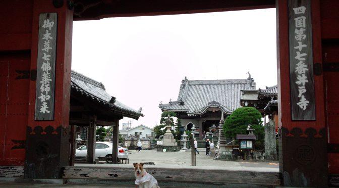 犬連れお遍路さん 17番井戸寺