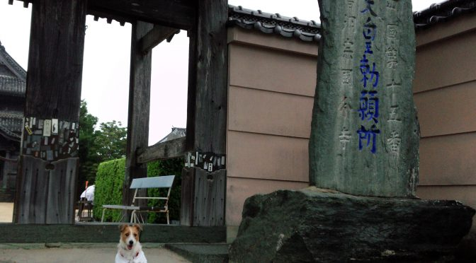 犬連れお遍路さん 15番国分寺