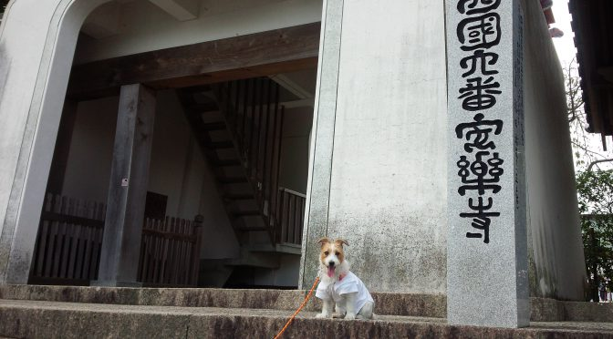 犬連れお遍路さん 7番十楽寺