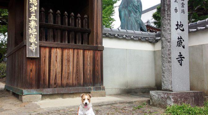 犬連れお遍路さん 5番地蔵寺
