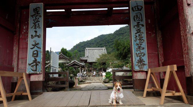 犬連れお遍路さん 4番大日寺